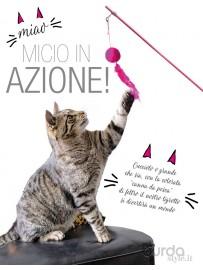 Fai divertire il tuo gatto!